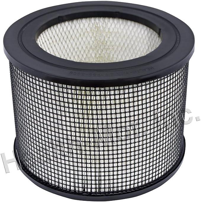 Genuine FilterQueen Defender medi-filter láser Filtro: Amazon.es ...