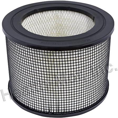 Genuine FilterQueen Defender medi-filter láser Filtro: Amazon.es: Hogar