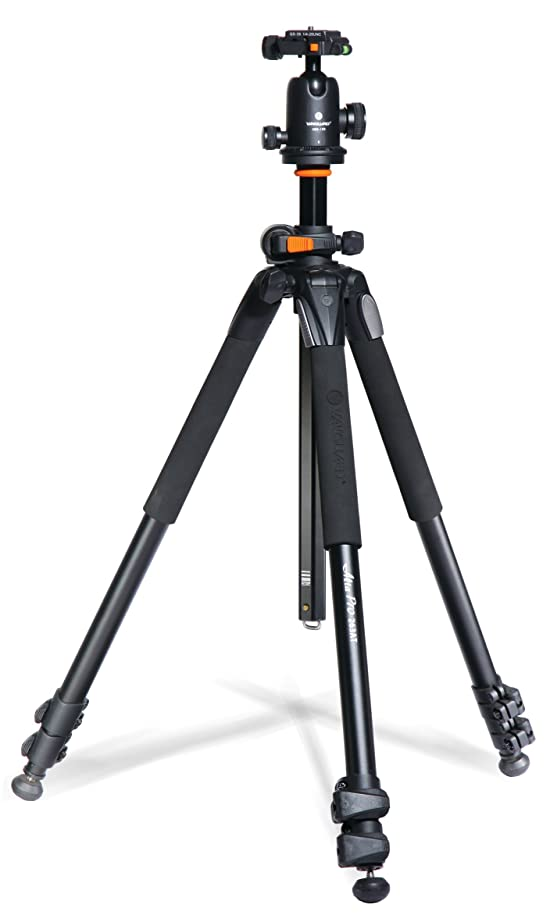 Best Runner-Up: Vanguard Alta Pro 263AB 100 Aluminum Tripod