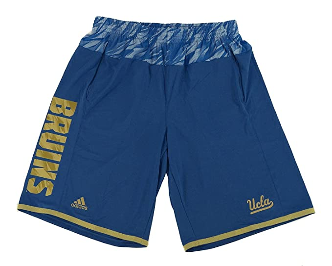 adidas shorts uomo blue