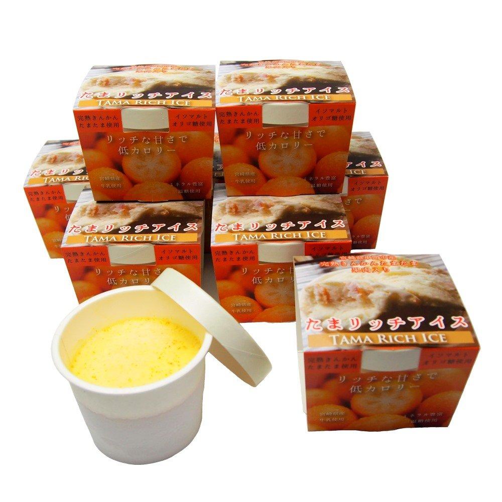宮崎県 串間産の完熟きんかん「たまたま」使用 『たまリッチアイス』 9個入り | アイス アイスクリーム