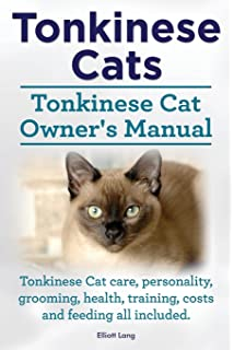 Guide to Owning a Tonkinese Cat