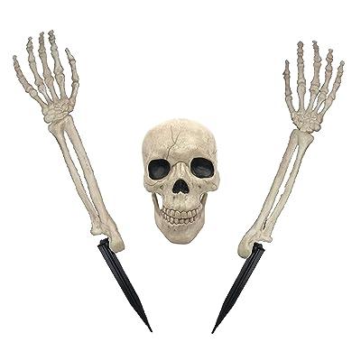 Crazy Bonez Buried Alive Skeleton Toy W80145: Toys & Games