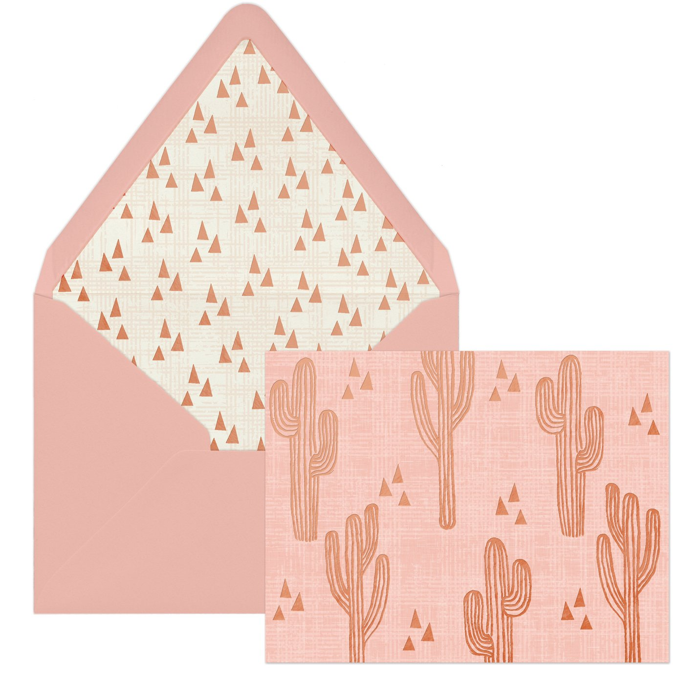 DesignWorks Ink 12-Count Boxed Blank Note Cards, Cactus Cuties