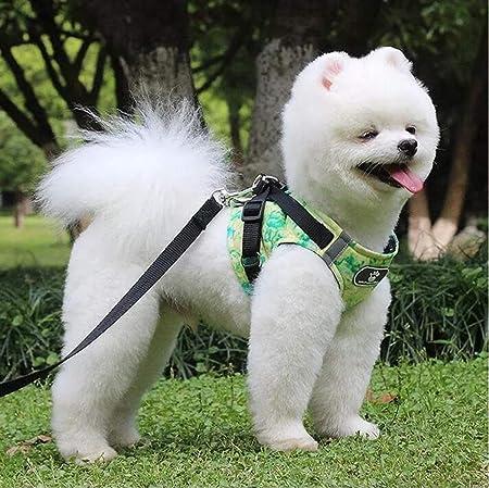 Ttyhch Chaleco de Seguridad para Perros Arnés Perro para Mascotas ...