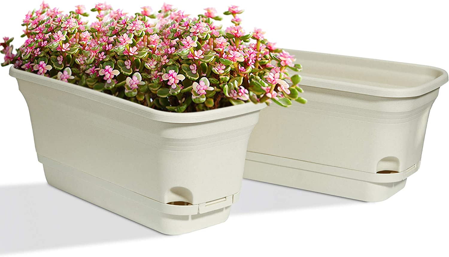 T4u 15 Inch Self Watering Planters Plastic Rectangular Plant Pot Modern Decorative Flower Pot Window Box For All House Plants Flowers Herbs African Violets Succulents Beige Set Of 2 Amazon Ca Home