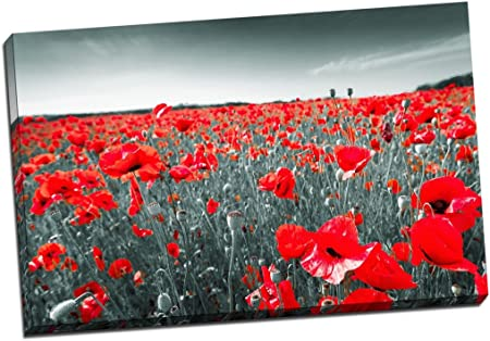 Black White Red Poppy Field Floral Canvas Print Picture Wall Art Large 30x20 Inches 76 2cm X 50 8cm Amazon Co Uk Kitchen Home