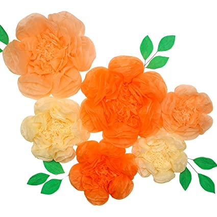Amazon tissue paper flowers set of 6 first birthday party tissue paper flowers set of 6 first birthday party flower wall wedding mightylinksfo