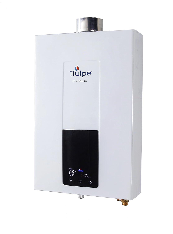 TTulpe® C-Meister 12 N20-E chauffe eau a ventouse, gaz naturel TTulpe® TTCM1220E