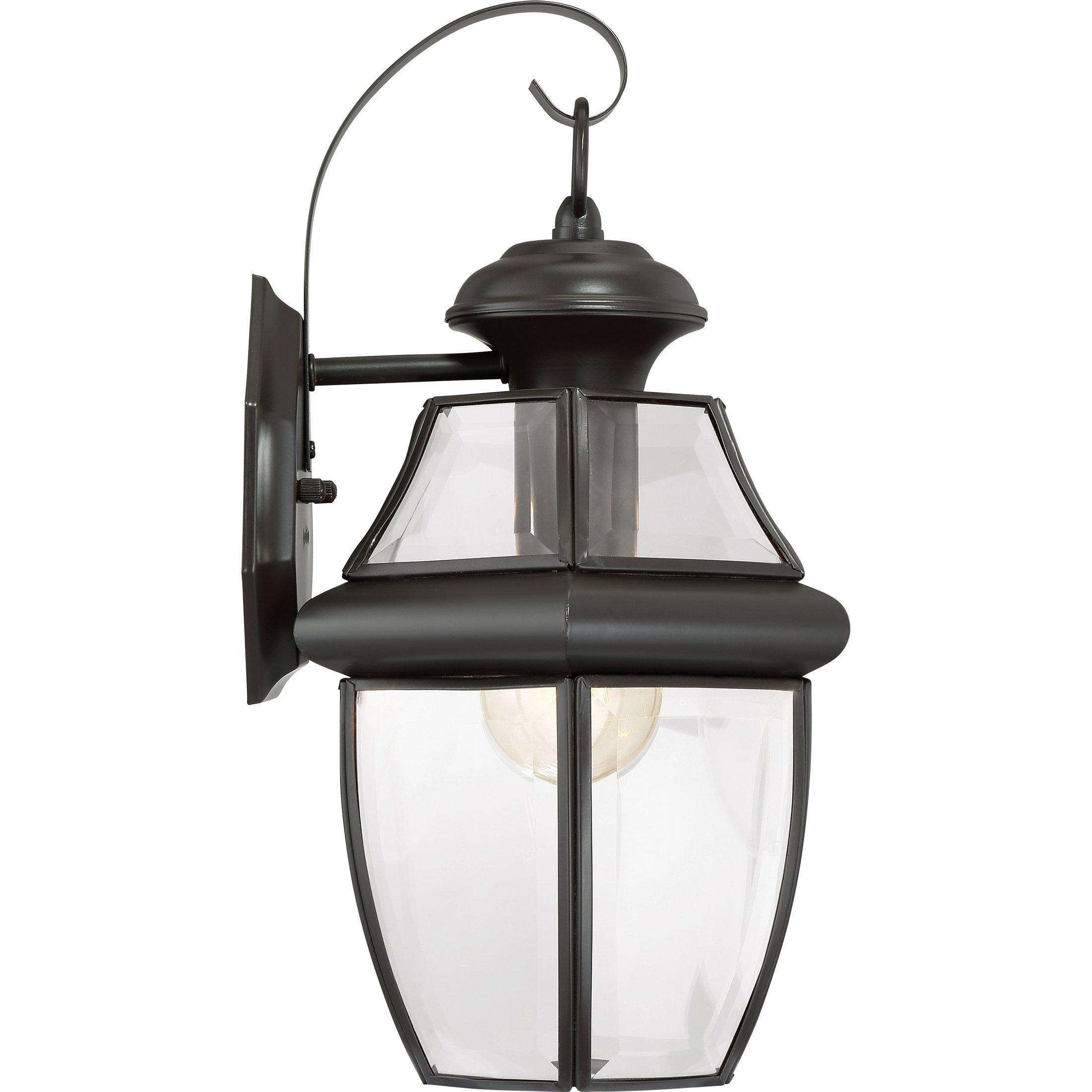 Torbrook Outdoor Wall Lantern Lighting for Garage Exterior, Brown, Clear Glass, Medium 1-Light 150 Watts, Dark Bronze by Torbrook