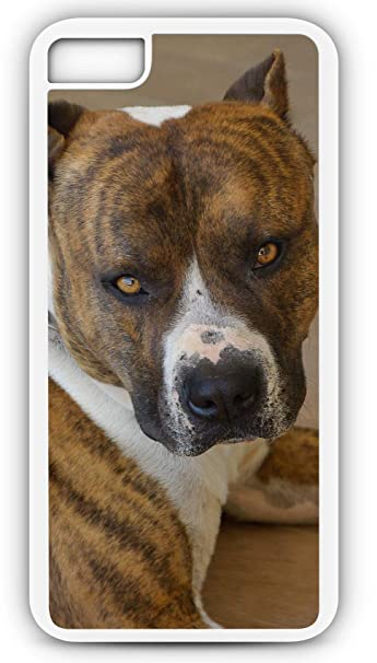 Amazon com: iPhone 8 Case American Staffordshire Watchdog