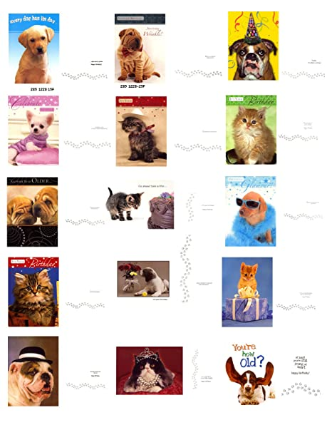 BULK SAVINGS ON 30 HUMOROUS BIRTHDAY CARDS WITH DOG AND CAT THEMES GREAT FOR MOM