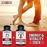 DHEA 50 mg Supplement - Hormonal Balance Formula