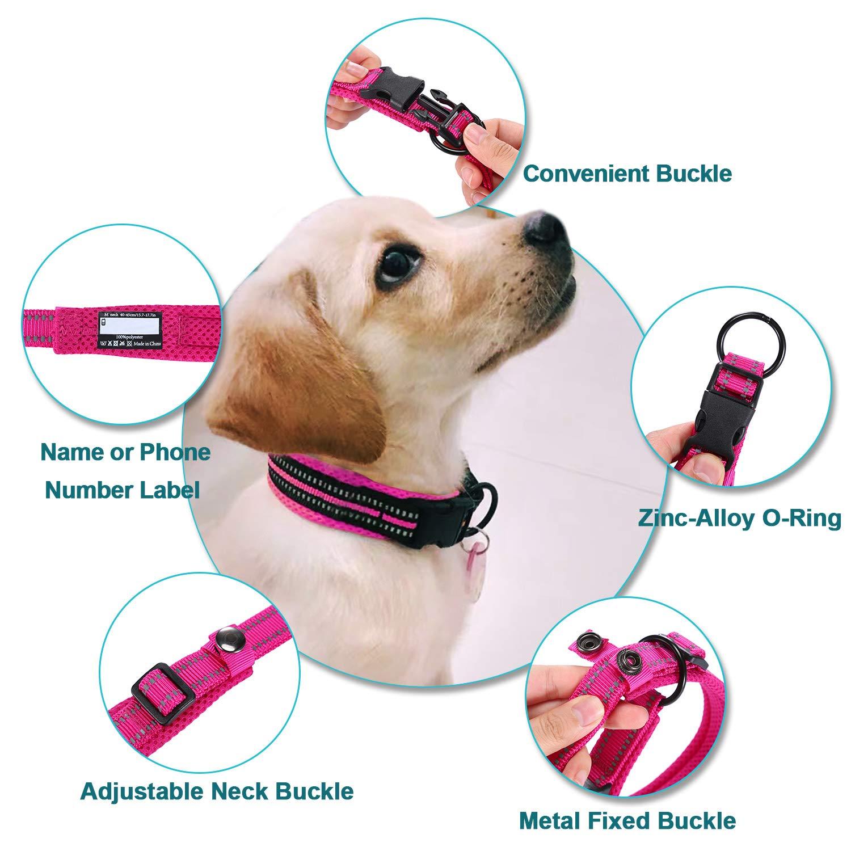 7 Gr/ö/ßen Panikgeschirr Sicherheitsgeschirr f/ür Pflegehunde 100 /% ausbruchsicher f/ür Angsthunde NoExit Hundegeschirr /® Das Original Reflexband