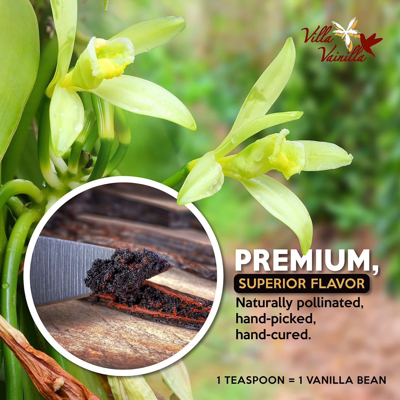 Villa Vainilla pure vanilla extract (8.4 fl.oz.) - Made with Premium, Hand-Picked Vanilla Beans - genuine and Natural Gourmet Flavor from Mexico - Kosher, vegan, GF by Villa Vainilla (Image #3)