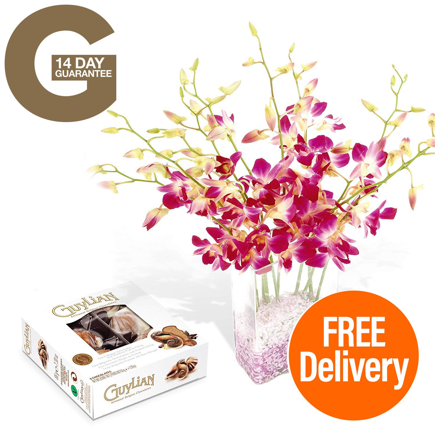 Fresh Flowers Delivered - Free UK Delivery - Singapore Orchid Bouquet with Free Chocolates, and Bonus Ebook Guide - Perfect for birthdays, anniversaries and thank you gifts - 14 Day Guarantee Guernsey Flowers