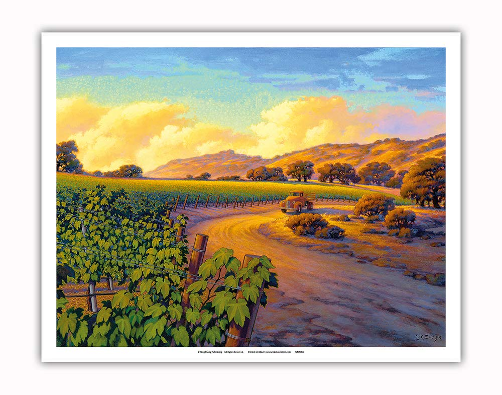 Pacifica Island Art - Vineyard Sunset - Wine Country Art by Kerne Erickson - Fine Art Print - 11in x 14in