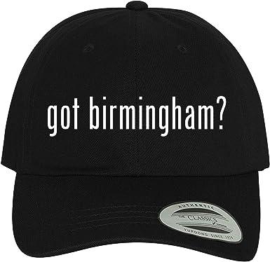 Comfortable Dad Hat Baseball Cap BH Cool Designs got Birmingham?