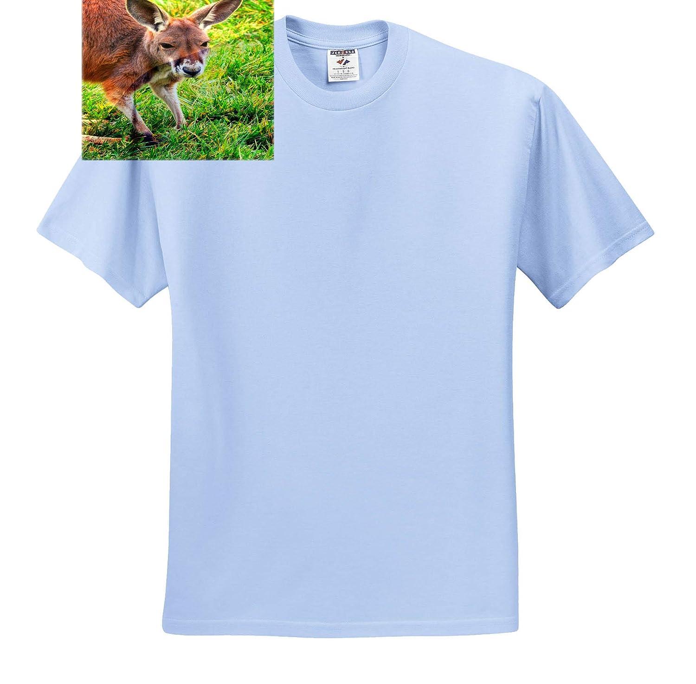 3dRose Mike Swindle Photography Kangaroo Portrait Animals T-Shirts