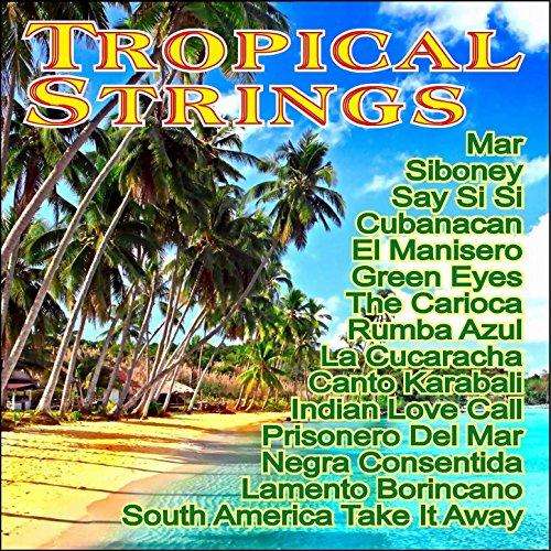 Tropical Strings ()
