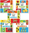 My First 100 Box Set- A Pack of Five Picture Books for Children (Animals, Words, Numbers, Food We Eat and Things That Move)