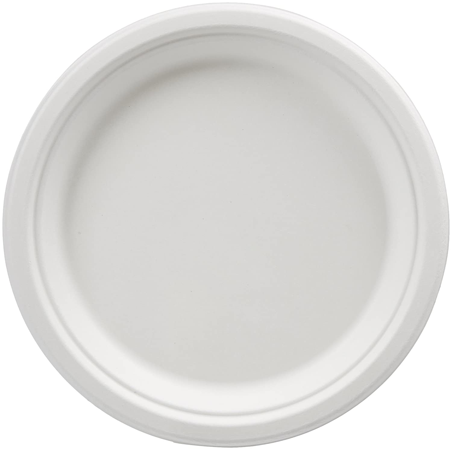 AmazonBasics 9-Inch Compostable Plates, 500-Count