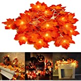 Thanksgiving Decorations Fall Lighted Garland, 7.2 Feet 20 LED Maple Leaf String Lights, Battery Powered, Perfect Decoration for Autumn Halloween Christmas Indoor Outdoor Birthday Gift (Warm White)