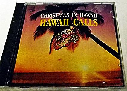 Christmas In Hawaii Movie.0