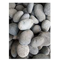 Planters River Stones Grey Color 10 Kg