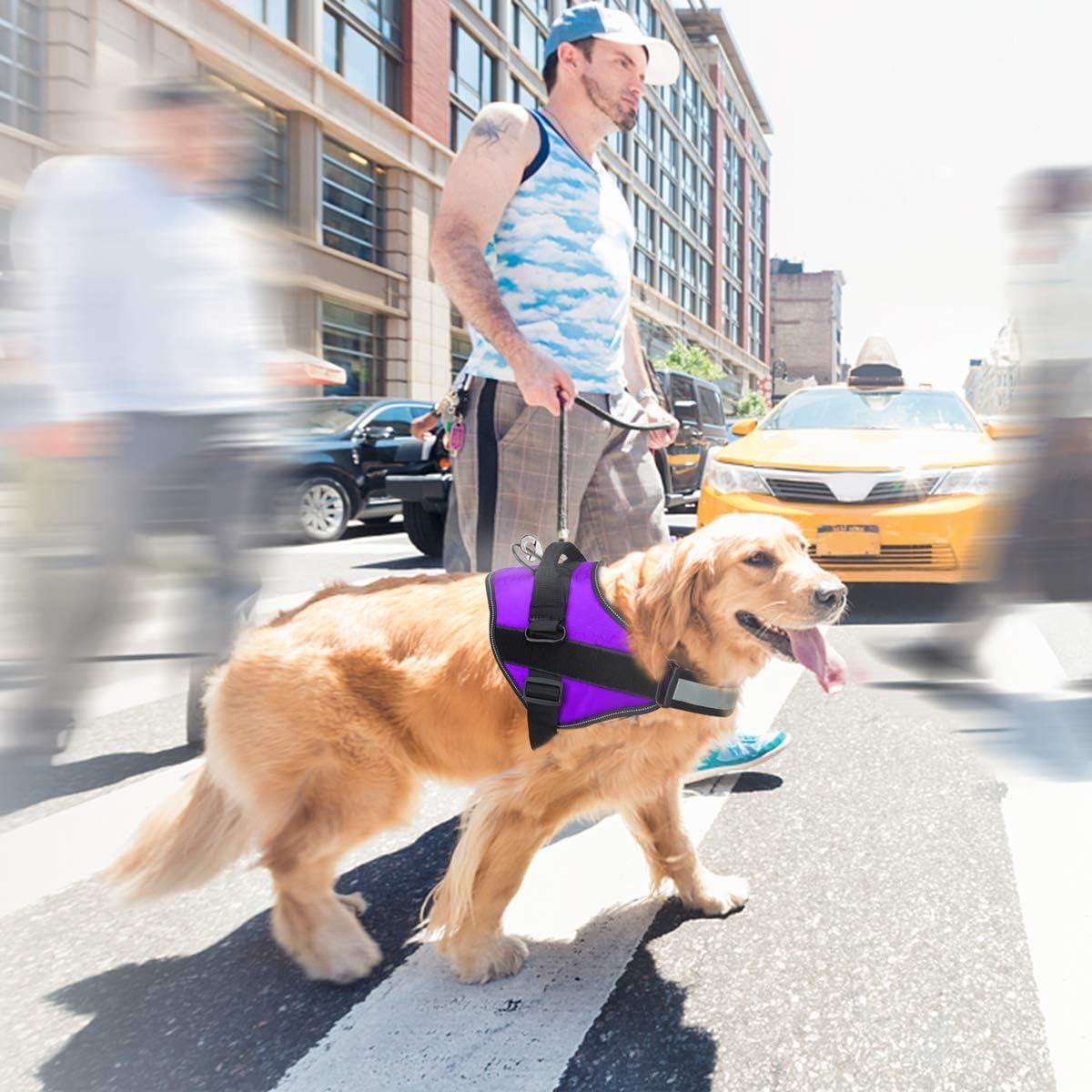 Harnais pour chien respirant sans traction r/églable Coffre daide /à lentra/înement /à la marche Contr/ôle facile en ext/érieur pour les petits chiens de taille moyenne Harnais pour chien bleu