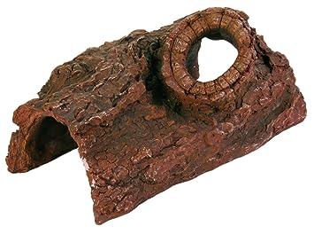 Cueva de Tronco Árbol, 21 cm