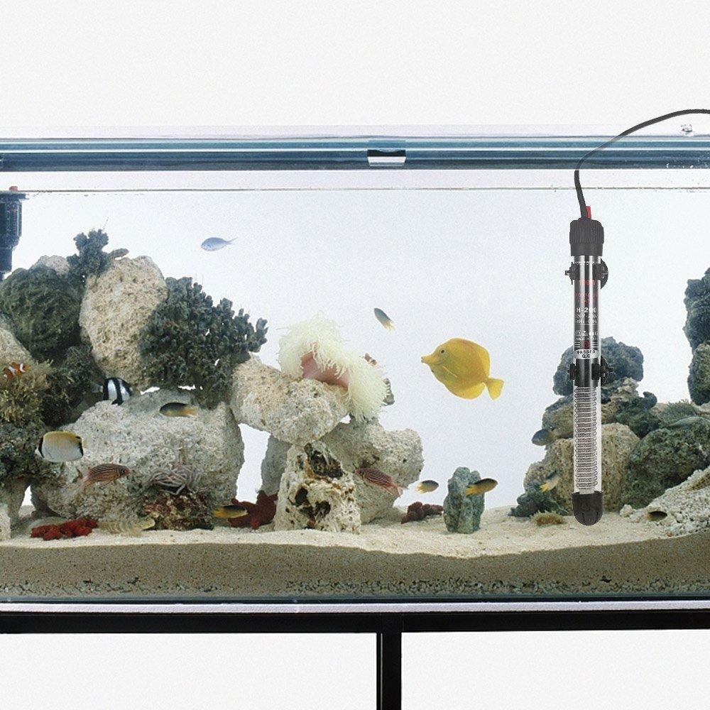 Aquarium Groß B 117 X H 60 Cm Haustierbedarf