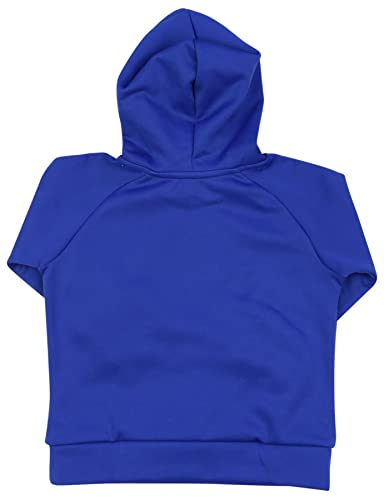 Amazon.com  Polo Ralph Lauren Big Boys  (8-20) Big Pony Pullover Hoodie   Clothing 25698ff6bf