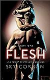 Flesh (Flesh Series Book 1)