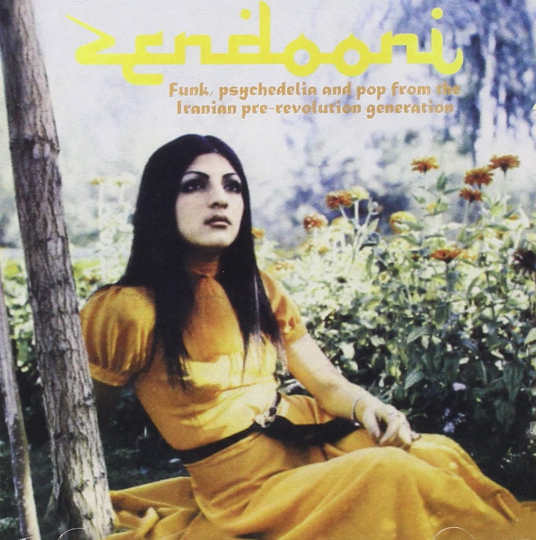 Zendooni: Funk, psychedelia and pop from the Iranian pre-revolution generation by Pharaway Sounds