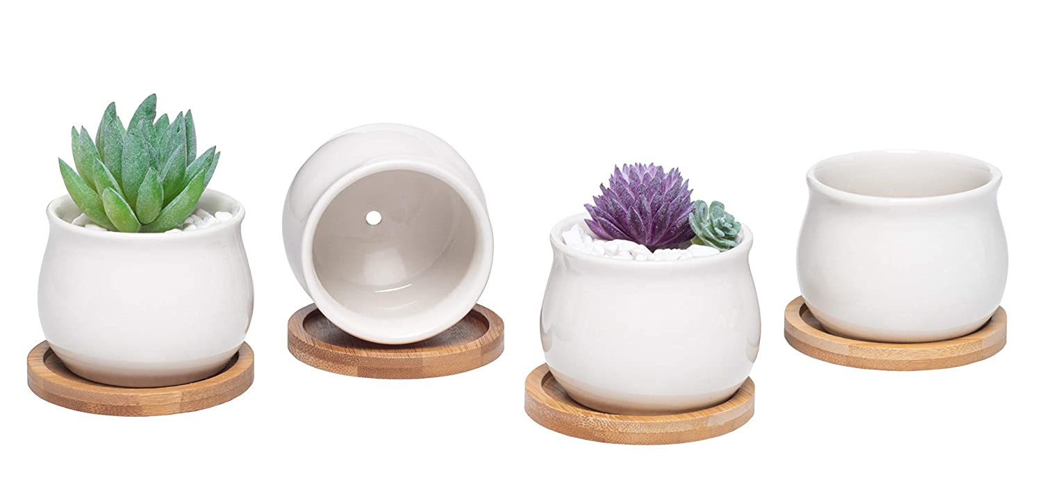 Small Succulent Ceramic Plant Pots – Tiny Clay Planters for Flowers, Cacti, Plants, and Succulents, Little Planters with Small Drainage Hole and Bamboo Drainage Tray, Indoor Pots Set of 4