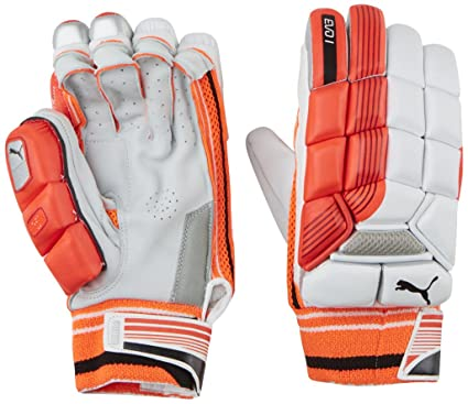 Puma Evo 1 Cricket Batting Gloves with Extra Protection (Left Hand ... bb6fd31d4caf