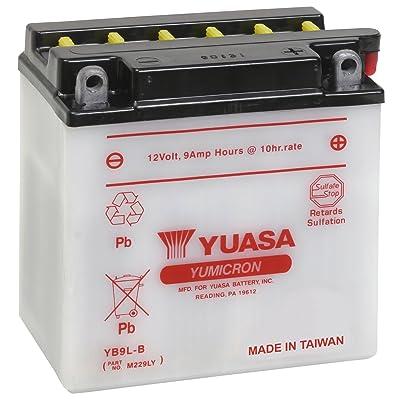 Yuasa YUAM229LY YB9L-B Battery: Automotive