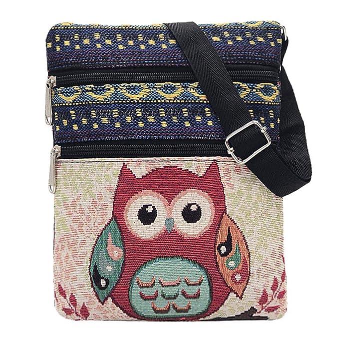 Amazon.com: Cartero bolsos, paymenow bolsas de con bordado ...