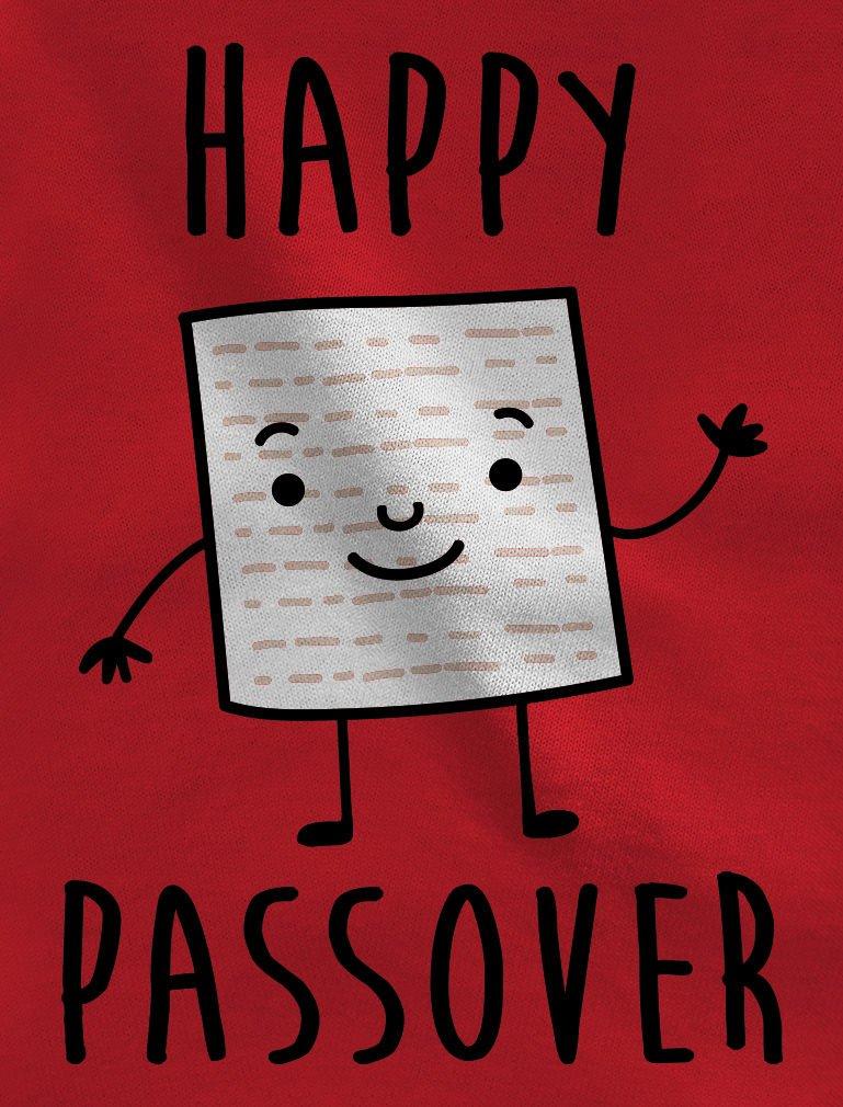 Tstars – Happy Passover Matzah Jewish Cute Passover Gift Baby Bodysuit