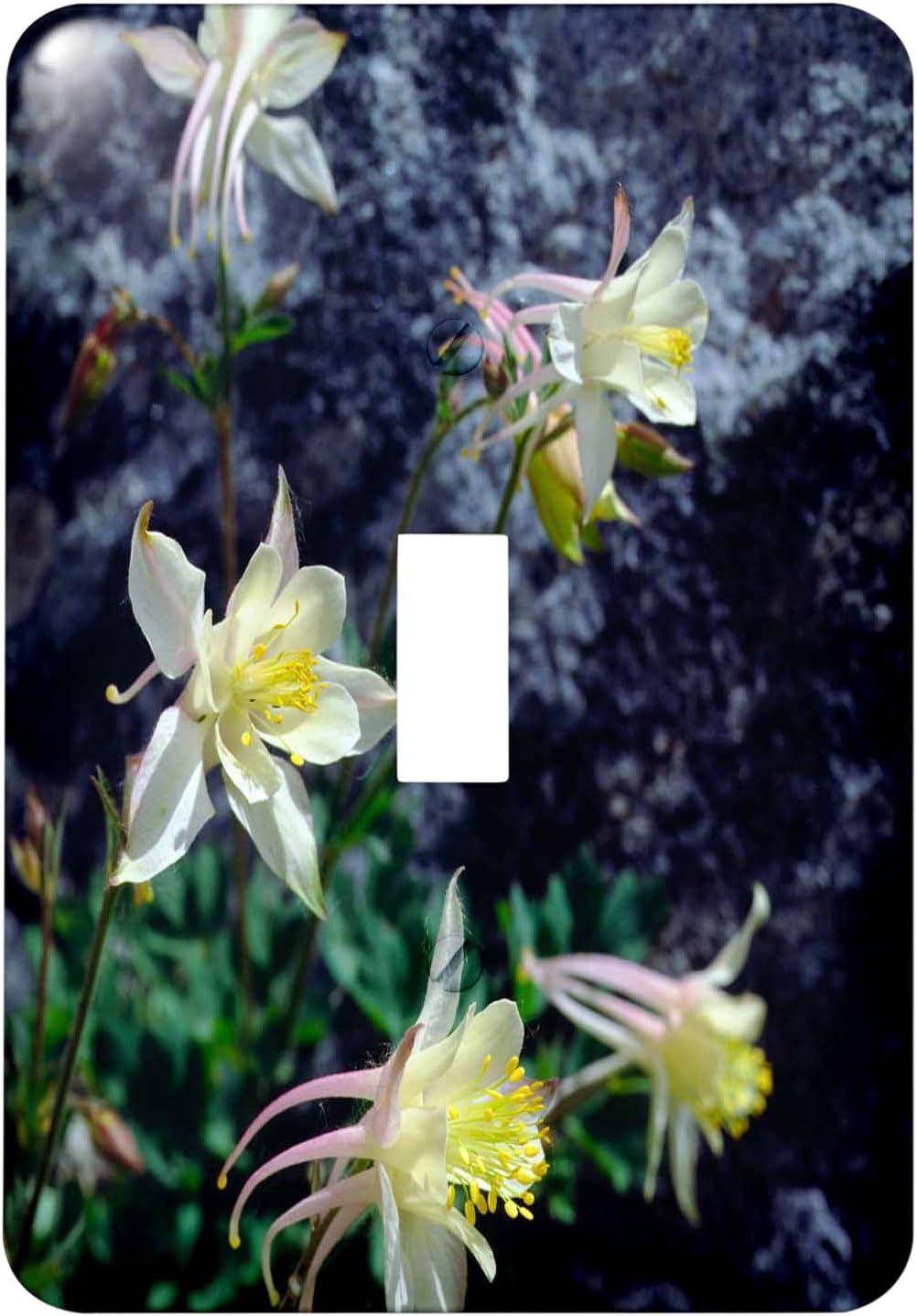 3drose Lsp 206141 1 Usa California Sierra Nevada Mountains Columbine Wildflowers Single Toggle Switch Amazon Com