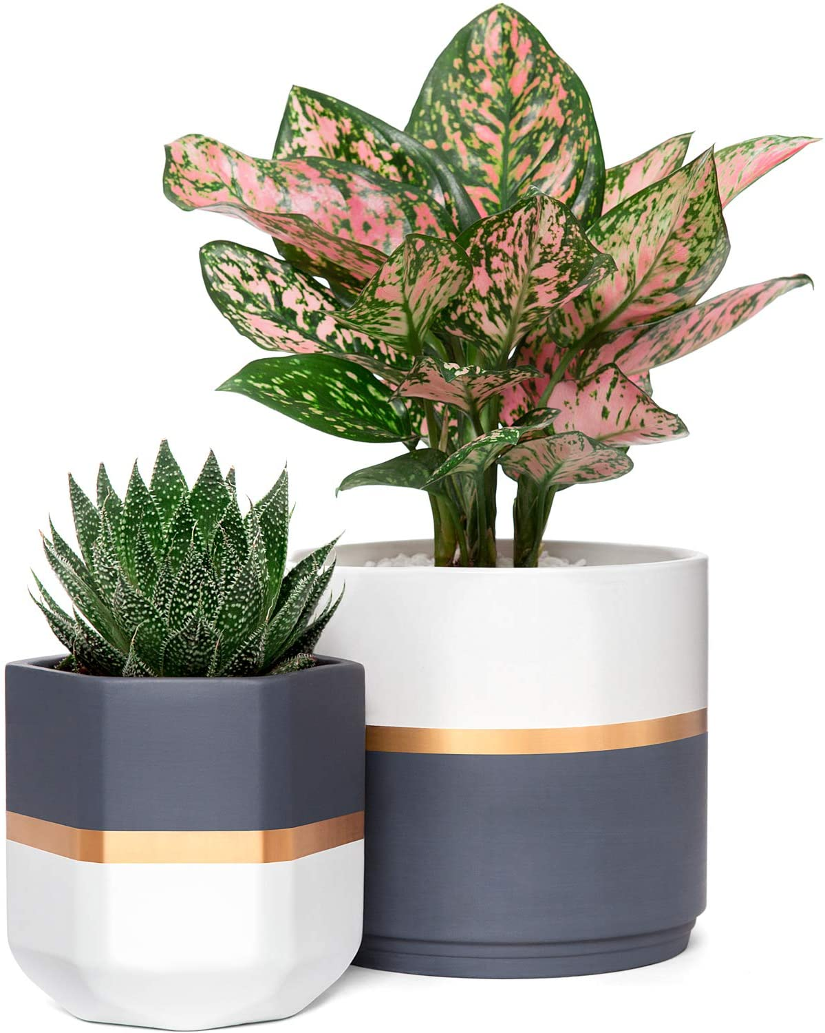 Amazon Com Mkono Ceramic Planters 5 And 6 3 Inch Indoor Modern Flower Plant Pot Set Of 2 Geometric Gardening Pots With Drainage For All House Plants Herbs Flowers Gold And Grey Detailing