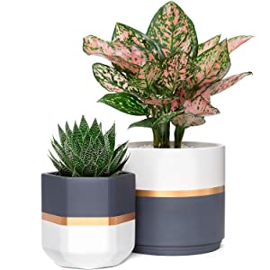 Mkono Ceramic Flower Pot Modern Garden Planters Indoor Outdoor Geometric Plant Containers with Drainage, Gold and Grey Detailing for All House Plants, Herbs, Flowers, Set of 2 (Plants NOT Included)