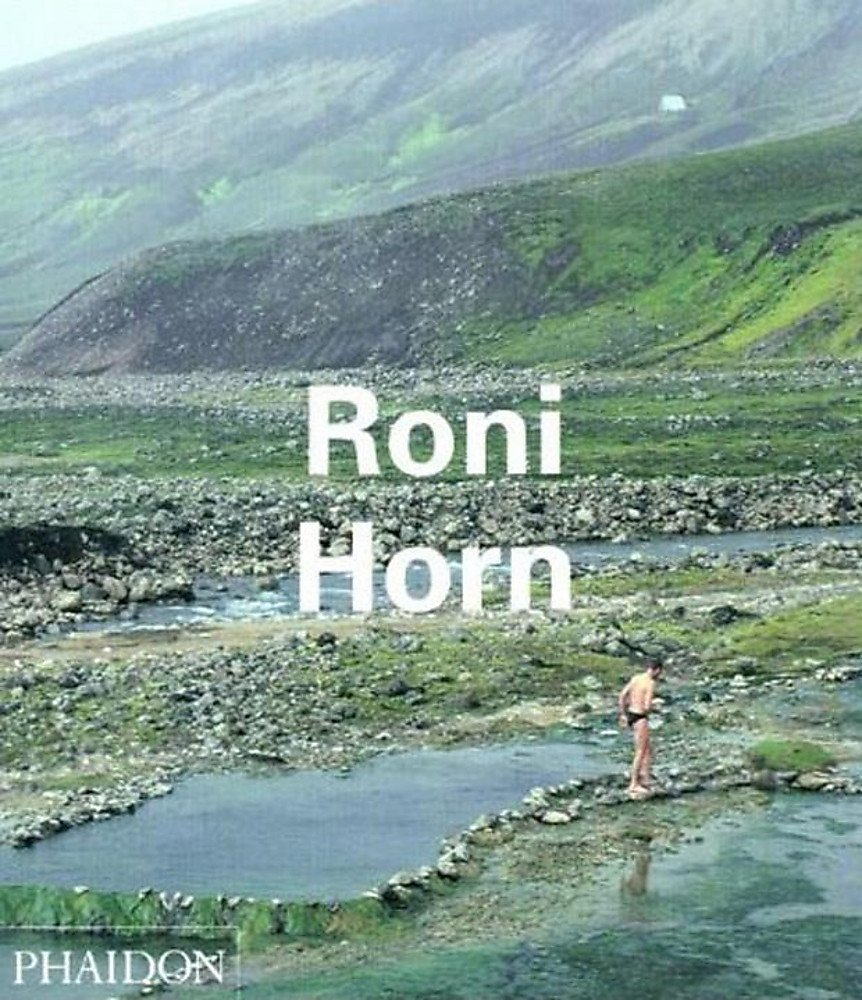 Roni Horn. Ediz. illustrata (Inglese) Copertina flessibile – 1 gen 2003 Louise Neri Phaidon 0714838659 Minimalism