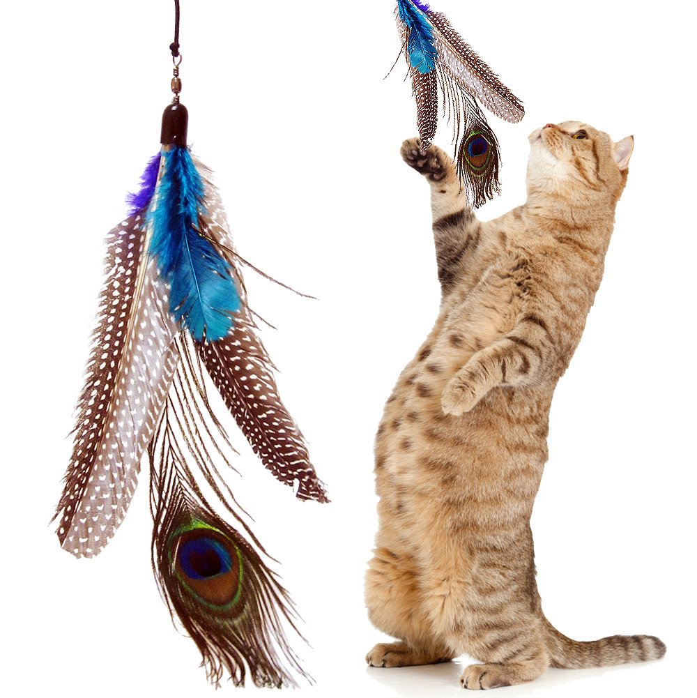 5 Pack +1 Bonus Refill Super Guinea Fowl Peacock Feathers for Cats Refill Replacement For Interactive Dancer Dangler Chaser Charmer Wand Fishing Pole Teaser Made for the Bird Catcher PRO Go Cat or Da Bird Cats Toys!