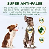 Bark Collar for Dogs - Effective K9 Professional