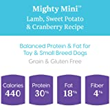 Solid Gold Small & Toy Breed Dry Dog Food; Mighty