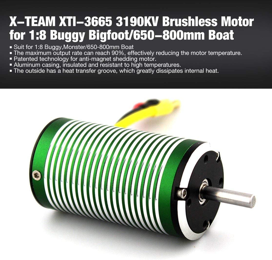 Candybarbar X-Team XTI-3665 3190KV Motor sin Sensor sin escobillas ...