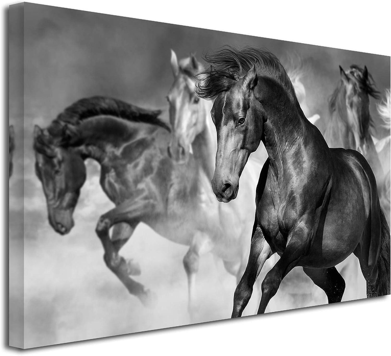 DECLINA - Cuadro de Animales, Cuadro Decorativo para Pared, Lienzo no Tejido, Cuadro Decorativo para Carreras de Caballos, 50 x 30 cm, Lona, Negro y Blanco, 150x100 cm