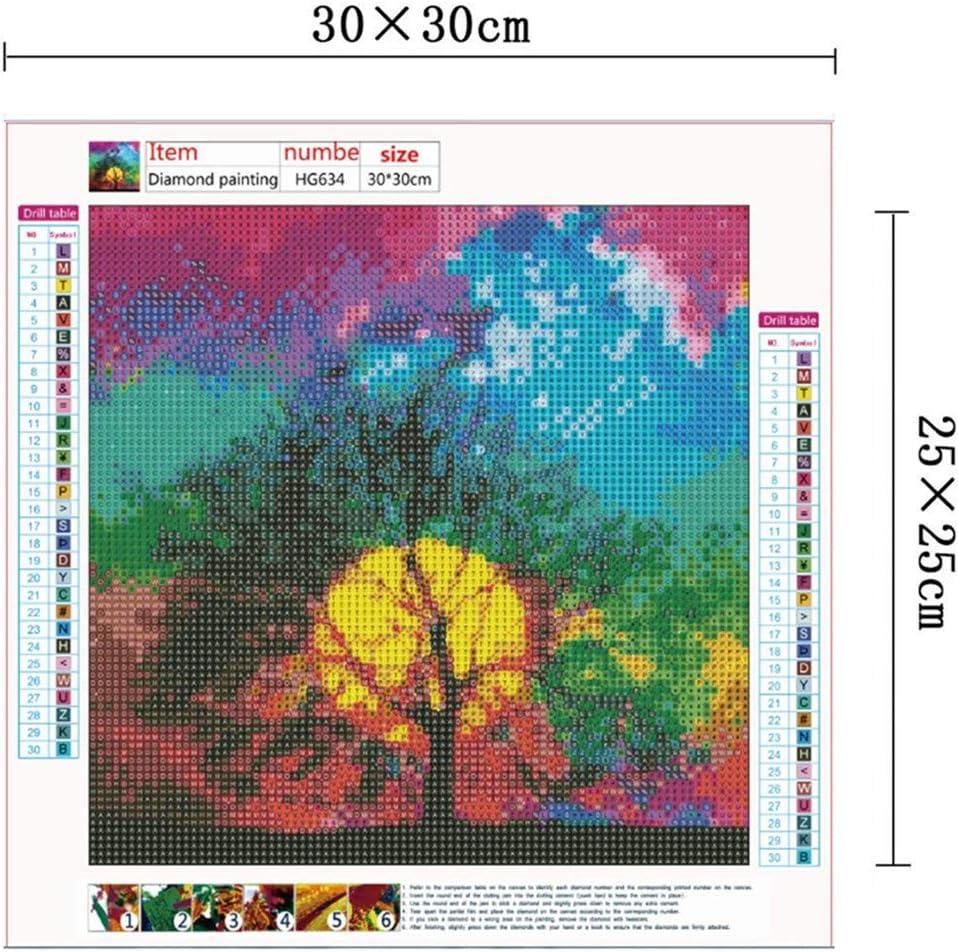 30 x 30 cm Alumuk 5D Diamant Full Malerei DIY Krystal Strass Stickerei Painting Diamont Stickerei Gem/älde f/ür Home Wall Decor